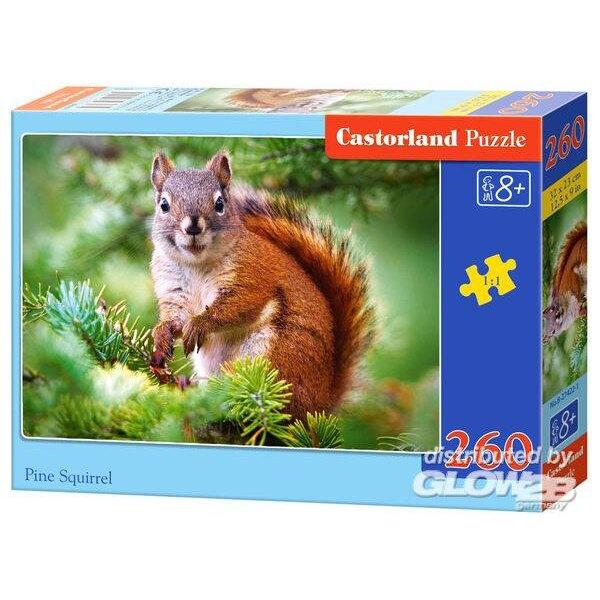 Kiefer Eichhörnchen Puzzle 260 Stück