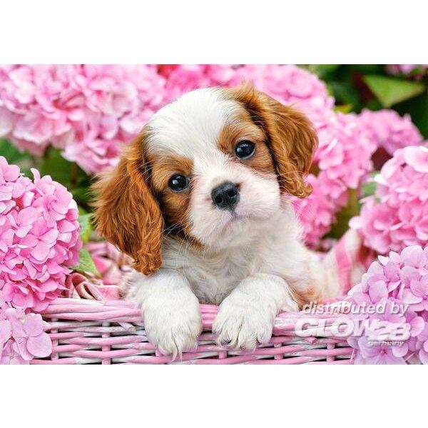 Welpe in rosa Blumen Puzzle 500 Stück