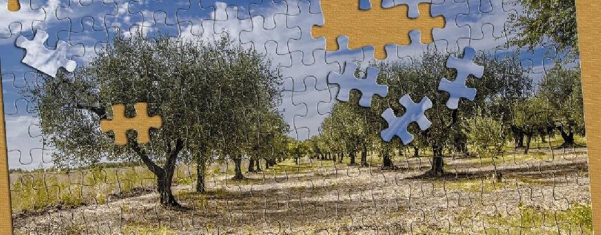 Puzzle Naturlandschaften - alle Puzzles sind auf 1001puzzles.de